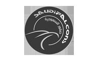 Saudi Falcons